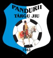 Pandurii Tg Jiu team logo