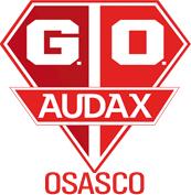 Gremio Osasco Audax team logo