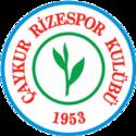 Rizespor team logo