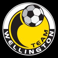 Team Wellington team logo