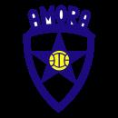 Amora team logo