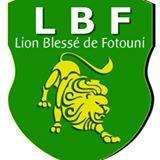 Lion Blesse team logo
