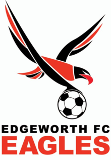 Edgeworth Eagles team logo