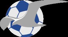 Haugesund team logo