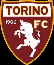 Torino team logo