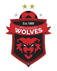Wollongong Wolves team logo