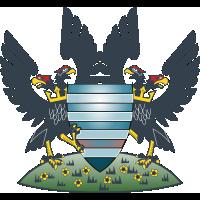 Salisbury FC team logo