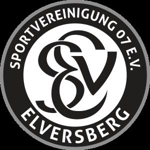 SV Elversberg team logo