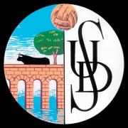 Salamanca CF UDS team logo