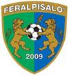 FeralpiSalo team logo