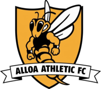 Alloa Athletic team logo