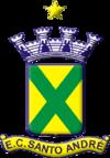 Santo Andre team logo