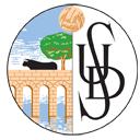 Salamanca team logo