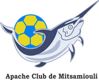 AC Mitsamiouli team logo