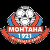 Montana team logo