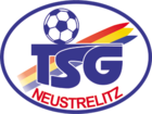 TSG Neustrelitz team logo