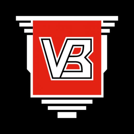 Vejle team logo