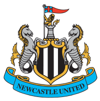 Newcastle team logo