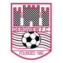 Dergview team logo