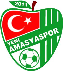 Yeni Amasya Spor team logo