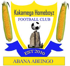 Homeboyz team logo