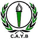 Youssoufia Berrechid team logo