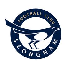 Seongnam FC team logo