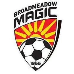 Broadmeadow Magic team logo