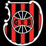 Brasil de Pelotas team logo