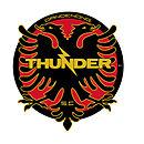 Dandenong Thunder team logo