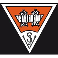 SV Innsbruck team logo