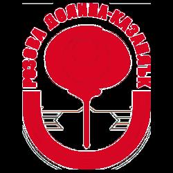 Rozova Dolina team logo