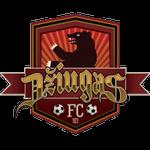 Dziugas team logo