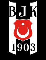 Besiktas (u19) team logo