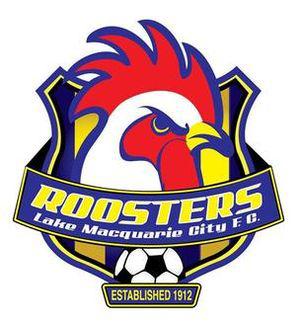 Lake Macquarie City team logo