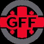 Georgia (u21) team logo