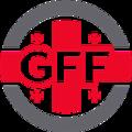 Georgia team logo