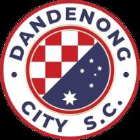 Dandenong City team logo