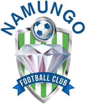 Namungo team logo