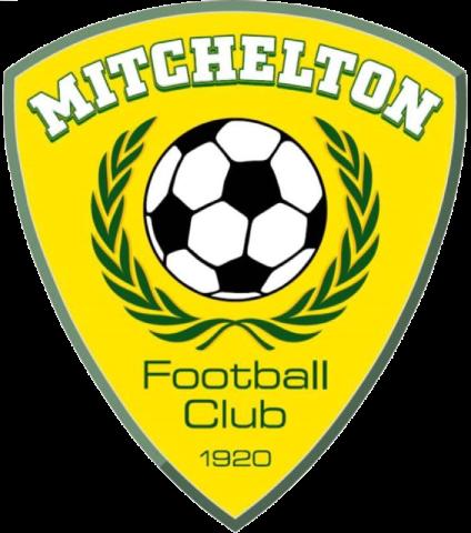 Mitchelton team logo