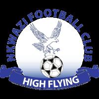 Nkwazi team logo