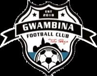 Gwambina FC team logo