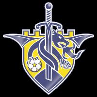 Barry Town team logo