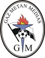 Gaz Metan Medias team logo