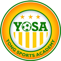 Young Sports Academy team logo