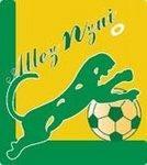 Panthere team logo