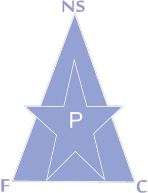 New Star team logo