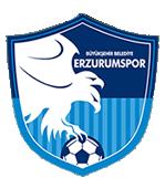 Erzurum BB team logo