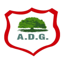 AD Guanacasteca team logo