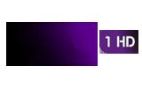 beIN Sports 1 / HD tv logo